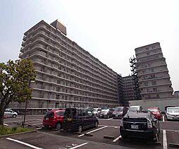 京都府京都市右京区西院月双町の賃貸マンションの外観