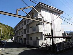 アイリスMT[1階]の外観