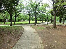 宝野公園は、桜並木と手入れの行き届いた芝生広場のある公園で、春にはお花見を楽しめます。宝野公園と奈良原公園を結ぶ通りは「富士見通り」といい、晴れた日には富士山が見られます。