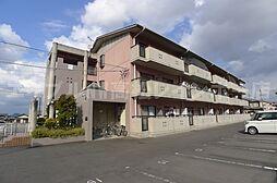 香川県高松市寺井町の賃貸マンションの外観
