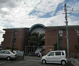 京都府京都市右京区太秦奥殿町の賃貸マンションの外観