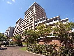 兵庫県神戸市中央区脇浜海岸通4丁目の賃貸マンションの外観
