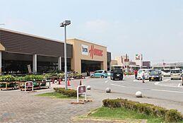 DCMホーマック坂東岩井店(4618m)