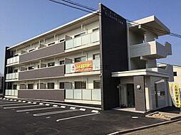 サン・ガーデンWINDOM中津東[203号室]の外観