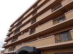 広島県廿日市市城内1丁目の賃貸マンションの外観