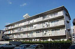 ロイヤルコ−ポ堺[4階]の外観