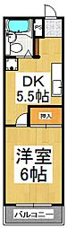 小糸ハイツ[2階]の間取り