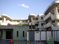 「グリーンメドウ洛」[1階]の外観