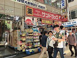 [一戸建] 神奈川県相模原市南区御園2丁目 の賃貸【/】の外観