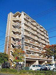福岡県大野城市仲畑3丁目の賃貸マンションの外観