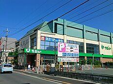 サミットストア大田千鳥町店まで567m