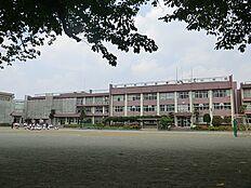 日野第八小学校 540m