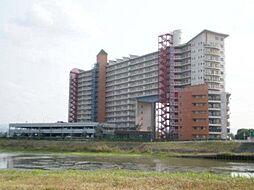 マンション(南草津駅からバス利用、3LDK、1,480万円)