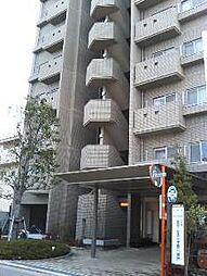 松崎ツインパークスN棟[802号室]の外観