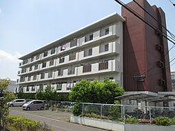 テゾーロ博多南[3階]の外観