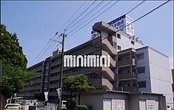 新栄二日市ハイツ[5階]の外観