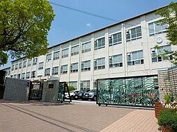 名古屋市立御幸山中学校まで733m