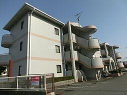 滋賀県大津市勧学1丁目の賃貸マンションの外観