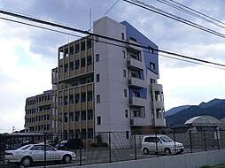 ニューガイア上石田[306号室]の外観