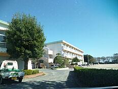 日立市立大沼小学校(1252m)