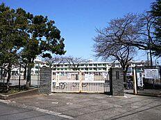 町田市立町田第六小学校(800m)