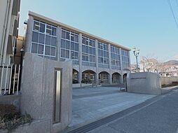 ディアコート本山[305号室]の外観