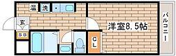 兵庫県神戸市須磨区前池町1の賃貸マンションの間取り