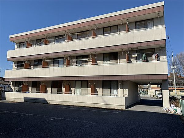栃木県佐野市金吹町の賃貸マンションの外観