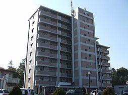 ヴェルドゥールB[6階]の外観