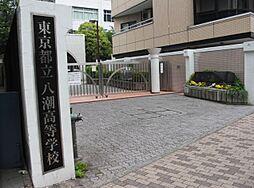 高校東京都立八潮高等学校まで1179m
