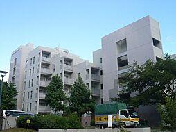 A.CITYヒルズパレットII番館B[4階]の外観