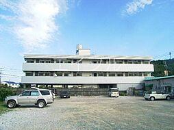 杉村マンション[3階]の外観