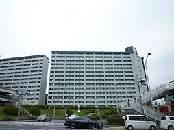泉北若松台B棟[10階]の外観