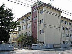 紀伊小学校