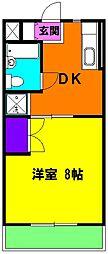 静岡県磐田市城之崎1丁目の賃貸マンションの間取り