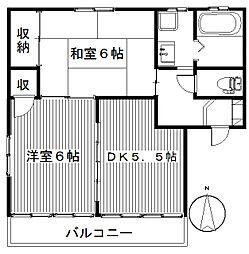 ドミールA[1階]の間取り
