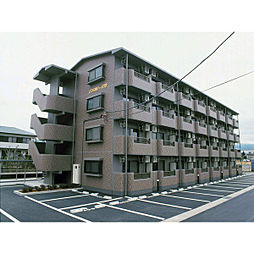 COSMO439[4階]の外観