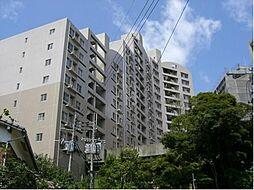 アメニス桜山寺A棟[9階]の外観
