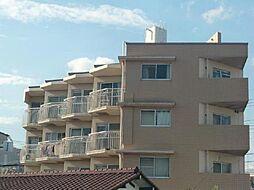 新井ビル[303号室]の外観