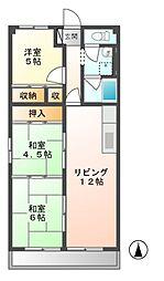 岐阜県可児市広見の賃貸マンションの間取り