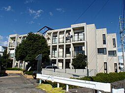 上島コモンコートD[1階]の外観