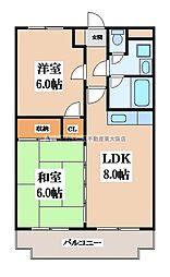 トリイプラザマンションII 1階2LDKの間取り