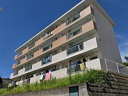 上星川駅 5.0万円