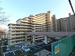 メゾンドールウイングヒルズ[9階]の外観