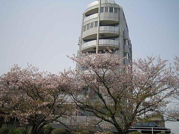 159ビル 1階の賃貸【広島県 / 広島市中区】