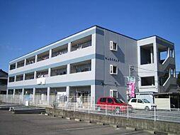 愛知県一宮市今伊勢町宮後字神戸の賃貸マンションの外観