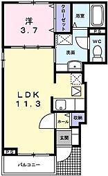 カーサ・ドマーニ 1階1LDKの間取り