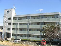 陽香マンション[4階]の外観
