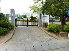 つくば市立栄小学校(700m)
