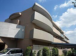 大阪府羽曳野市野々上1丁目の賃貸マンションの外観